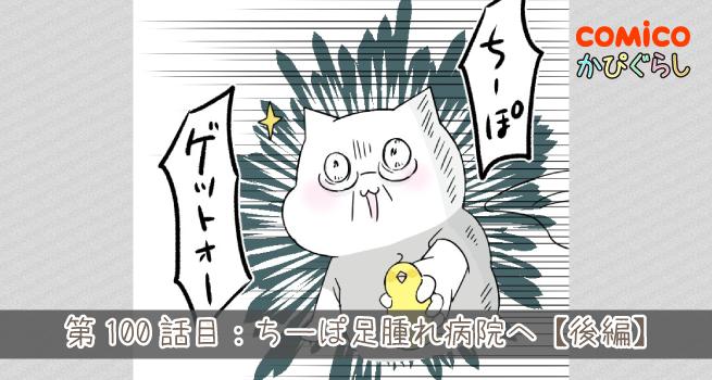 第100話目:ちーぽ足腫れ病院へ【後編】