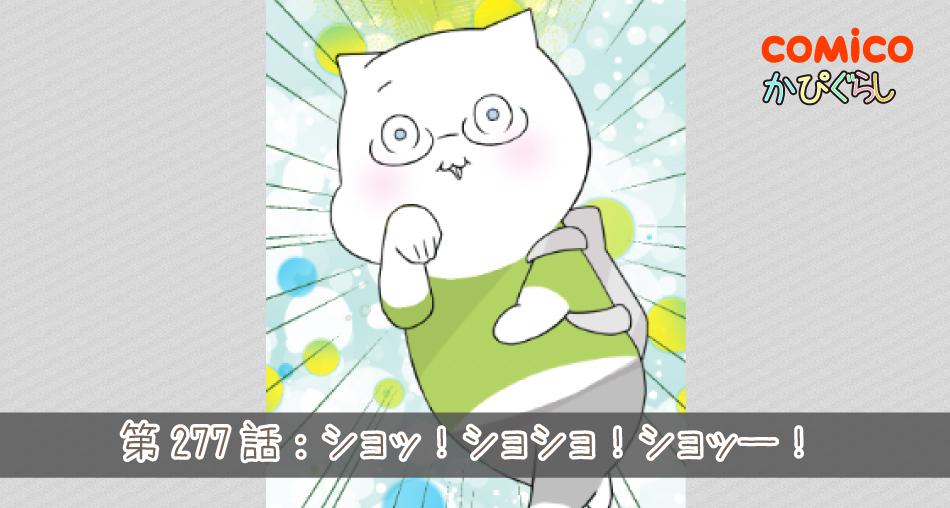 かぴぐらし第277話:ショッ!ショショ!ショッー!
