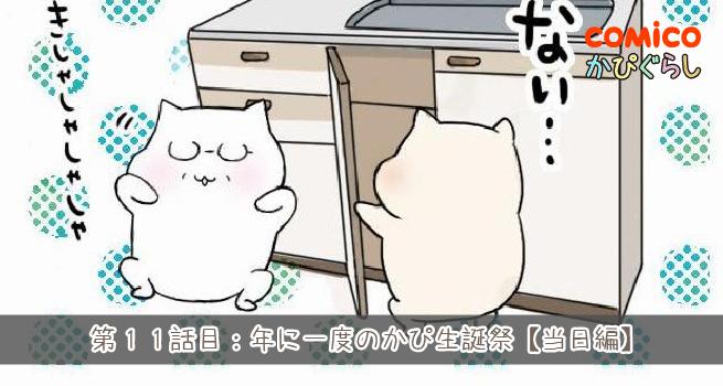 第11話目:年に一度のかぴ生誕祭【当日編】