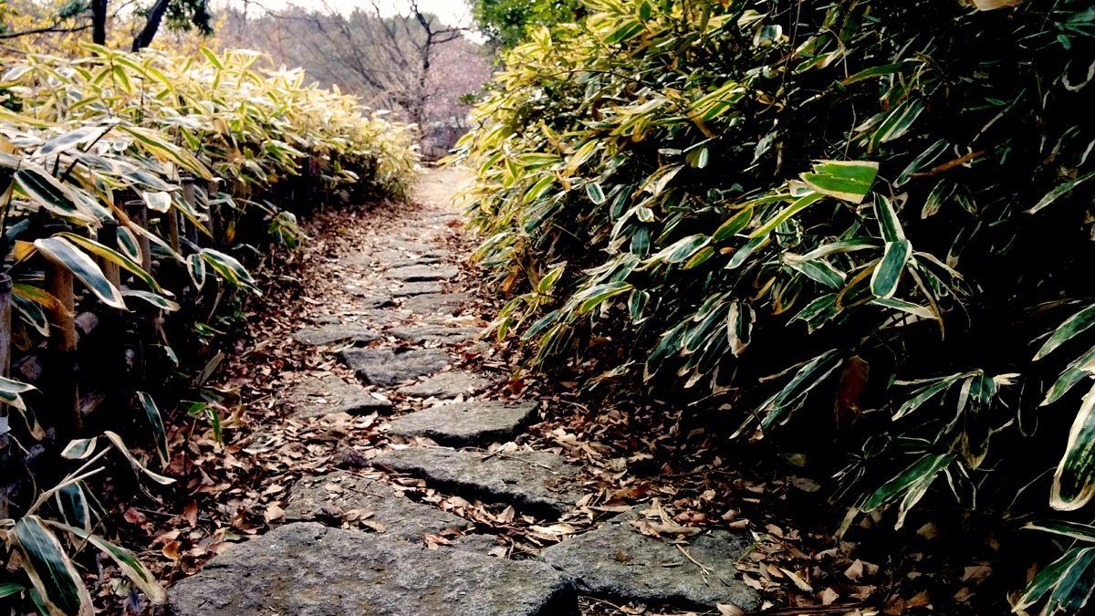 葛西臨海公園の散歩