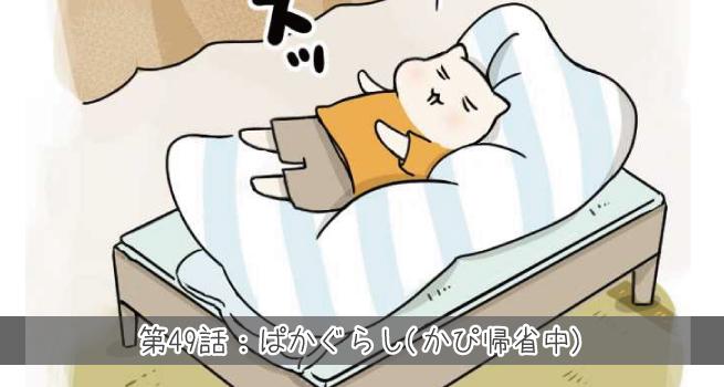 第49話目:ぱかぐらし(かぴ帰省中)