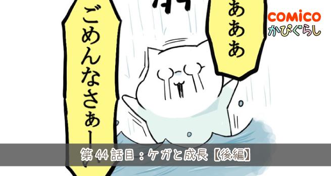 第44話目:ケガと成長【後編】